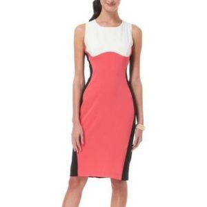 RN Studio Color Block Sleeveless Dress